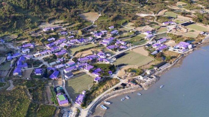Menarik untuk Dikunjungi, Intip Pesona Pulau Berwarna Ungu di Korea Selatan