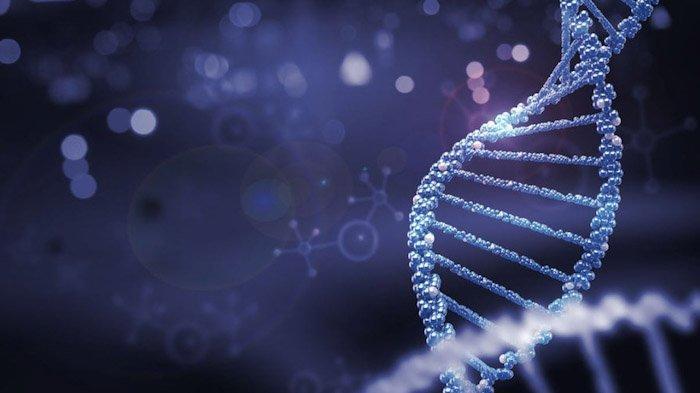 Apakah Covid-19 Masuk Dalam DNA Manusia, Ini Kata Ilmuan