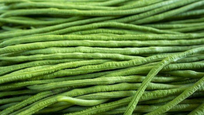 Manfaat Kacang Panjang Untuk Kesehatan, Kaya Vitamin dan Nutrisi