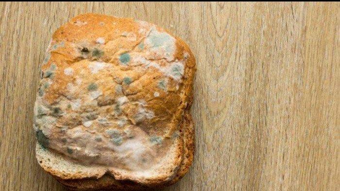 Efek Tak Sengaja Makan Makanan Berjamur? Ini 5 Makanan yang Masih Aman Dikonsumsi Meski Berjamur