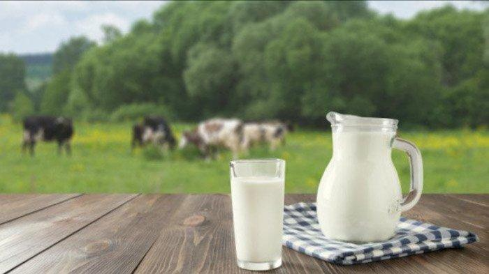 Mana yang Lebih Baik Dikonsumsi Anak, Susu Sapi atau Susu Kambing