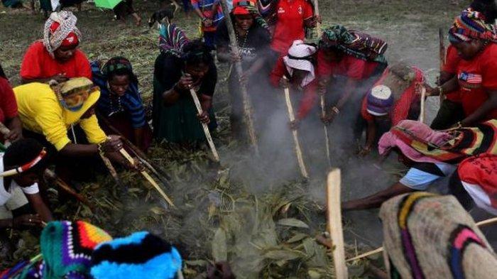 Mengenal Barapen atau Bakar Batu, Budaya Memasak Khas Papua Tertua yang Rumit