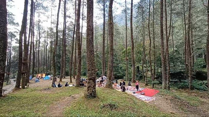 Ingin Camping di Bumi Perkemahan Sekipan Tawangmangu? Berikut Rute dan Harga Tiket Masuk