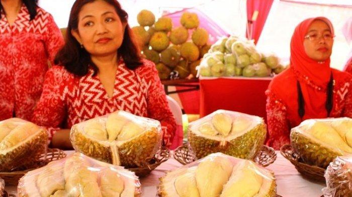 Sensasi Durian Asal Semarang, Miliki Rasa Unik Dari Pahit Hingga Legit