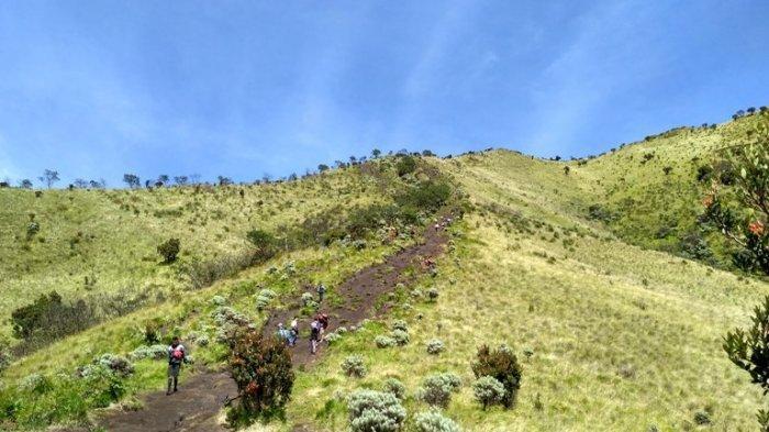 4 Tips Penting Saat Mendaki Gunung Merbabu di Musim Hujan