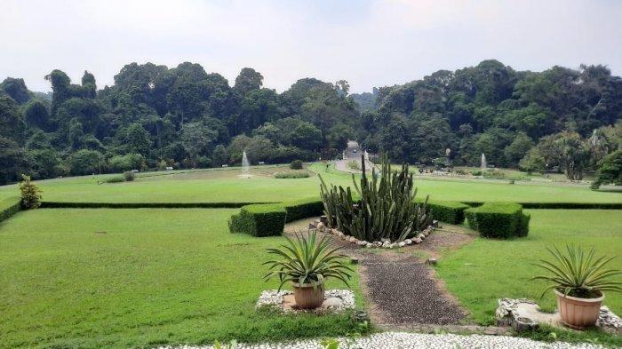 Wisata Malam Bernuansa Digital Akan Hadir di Kebun Raya Bogor