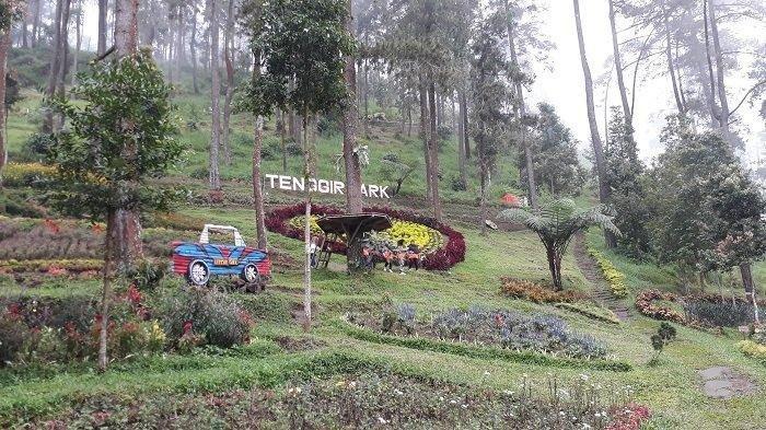 Mulai Taman Bunga Hingga Karpet Terbang, Begini Pesona Keindahan Tenggir Park di Karanganyar