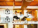hotel-dan-cafe-kucing.jpg