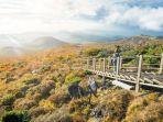 ilustrasi-korea-selatan-hallasan-national-park-yess.jpg