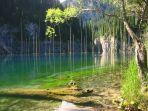 pohon-cemara-di-danau-kaindy-okeee-kazakhstan.jpg