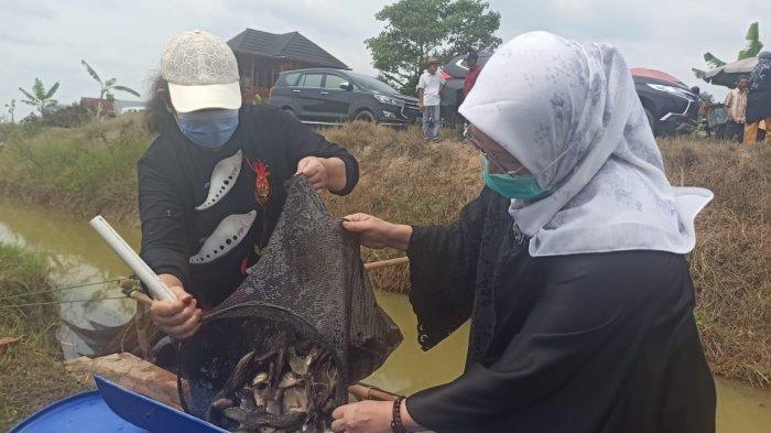 TP PKK Sumsel Lestarikan Tradisi Melebung di Ogan Ilir