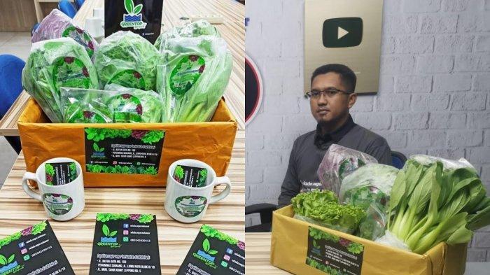 Cari Sayuran Higienis? Pesan di Greentop Farm, UMKM Hidroponik & Organik di Makassaer