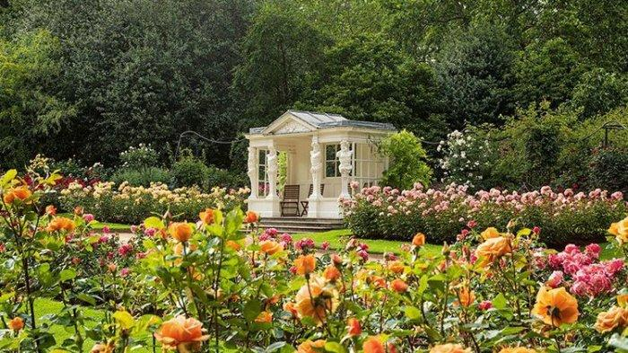 Istana Buckingham Dibuka untuk Wisatawan, Tanaman Asli Langka Ada di Sini