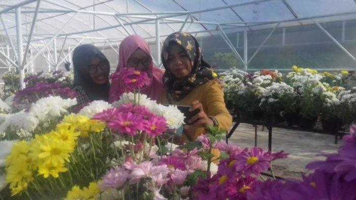 Rekomendari Toko Bunga, Karangan Bunga, & Tanaman Hias Bisa Jadi Kado Valentine di Makassar