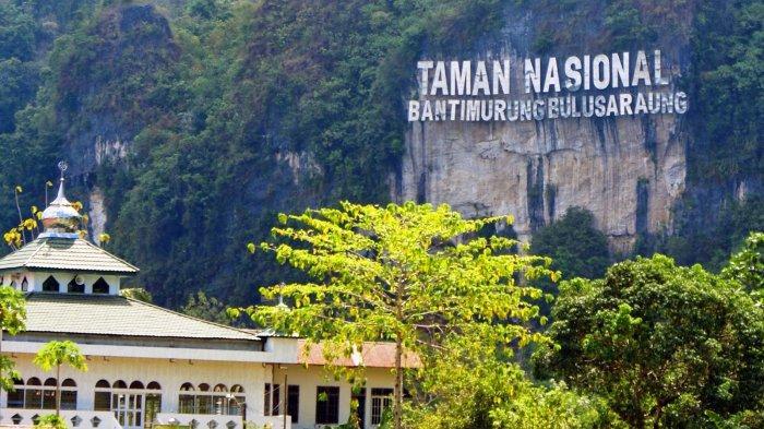 7 Objek Wisata yang Bisa Anda Nikmati di Taman Nasional Bantimurung