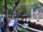 Panduan Harga Tiket Masuk Kebun Binatang Ragunan Jakarta
