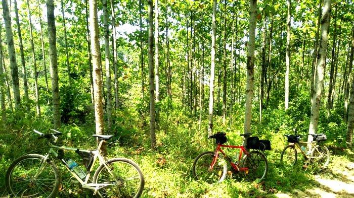 Bersepeda ke Cioray (Lagi), Mencari Bahagia untuk Melawan Virus