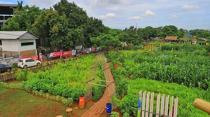 Ecofarm Koang Jaya ini Cocok Dikunjungi saat Sedang Penat