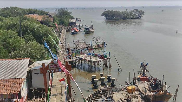 Ekowisata Mangrove Pantai Mekar Muara Gembong ini Menanti Dikunjungi