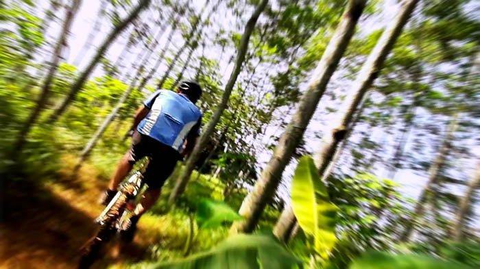 Bersepeda di Jalur Kobra untuk Liburan yang Dekat dengan Jakarta