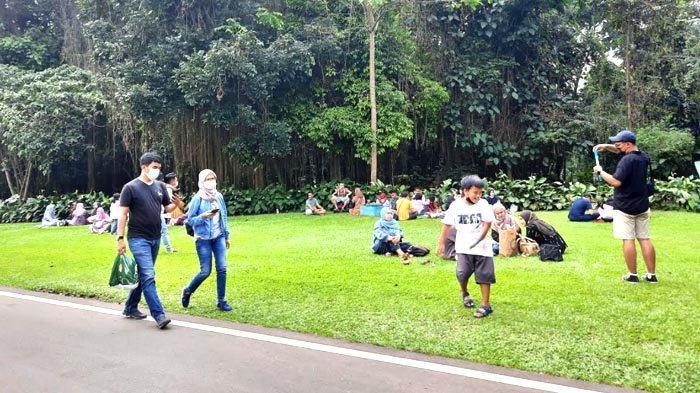 Kebun Raya Bogor Kebanjiran Wisatawan yang Tak Bisa Ke Puncak
