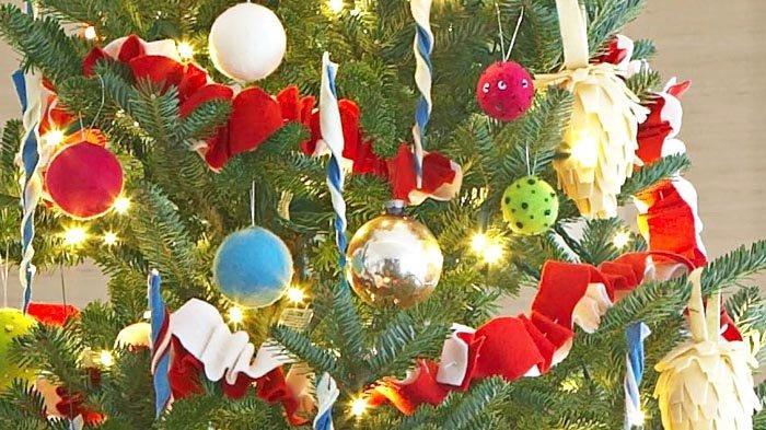 Pohon Natal Asli Masih Tetap Diminati Masyarakat